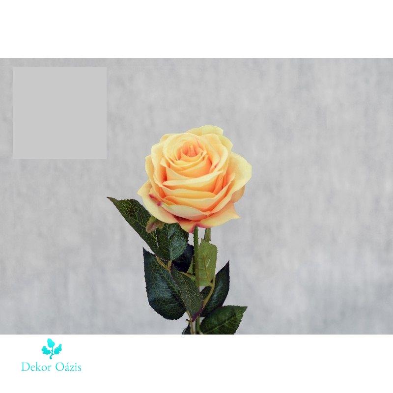 Rózsa félnyílt 3 színben